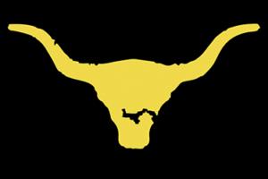 Vaqueras logo